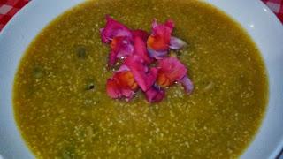 zuppa di okara