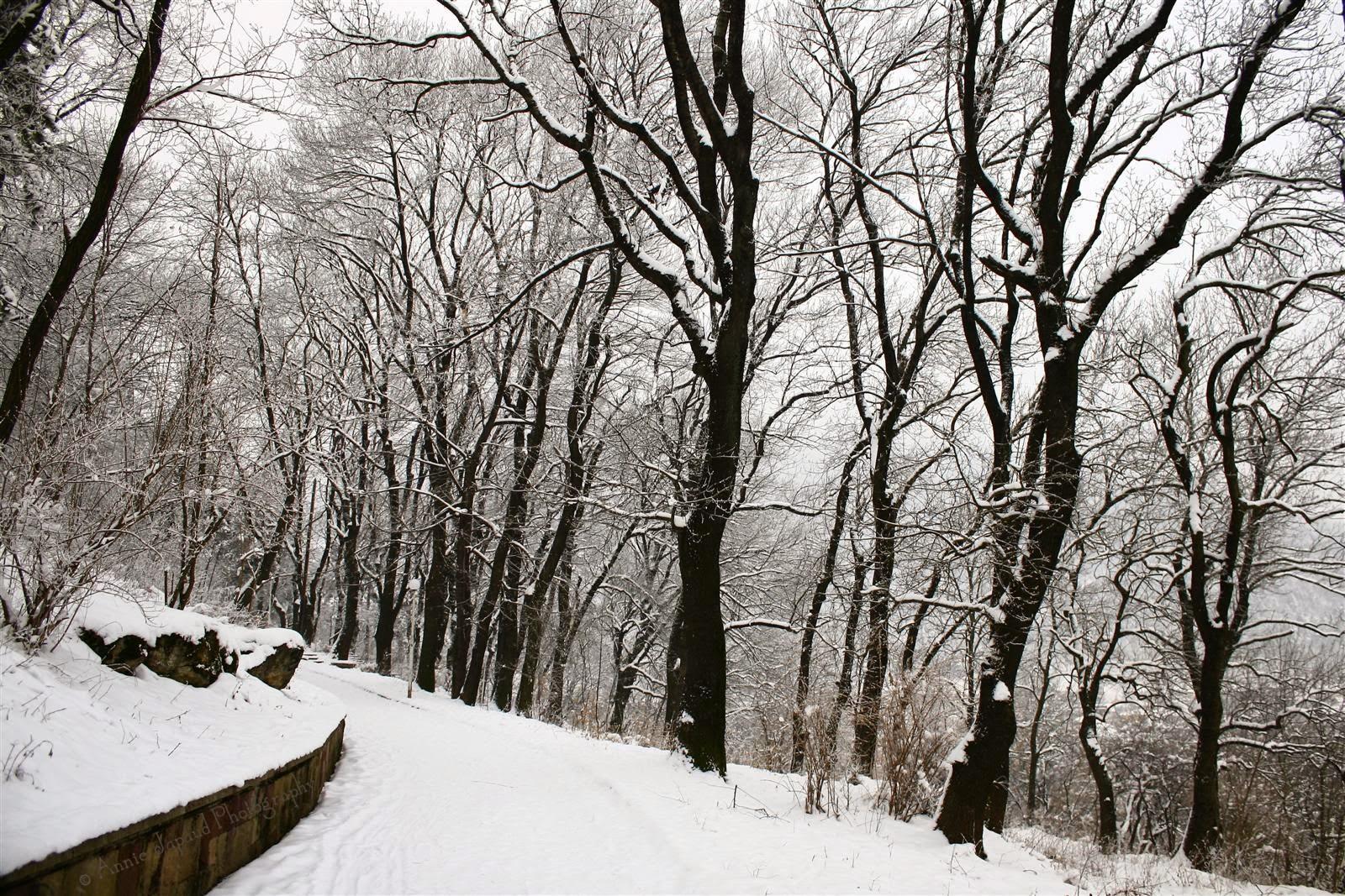 hijata, snow image, Vratsa, Bulgaria
