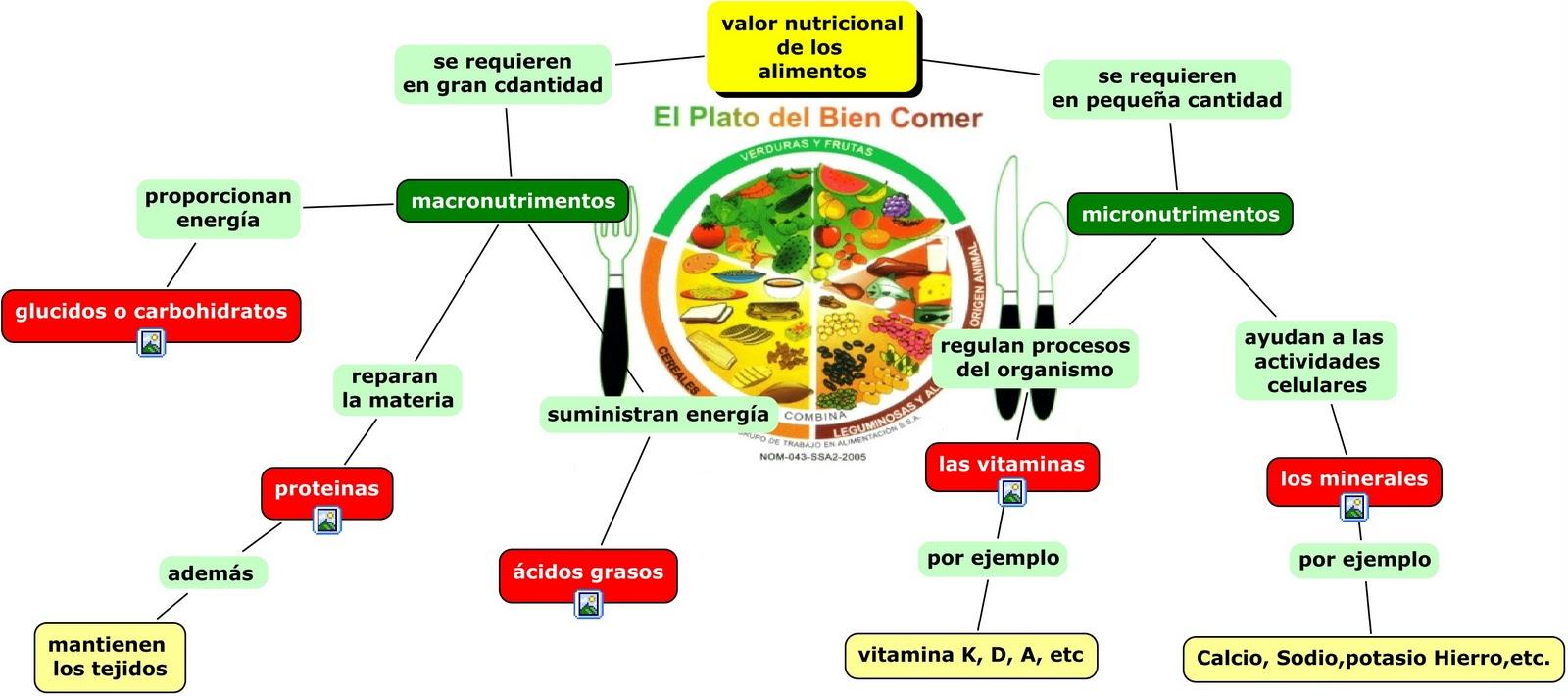 Magazine 57 material de trabajo para ciencias i diciembre - Contenido nutricional de los alimentos ...