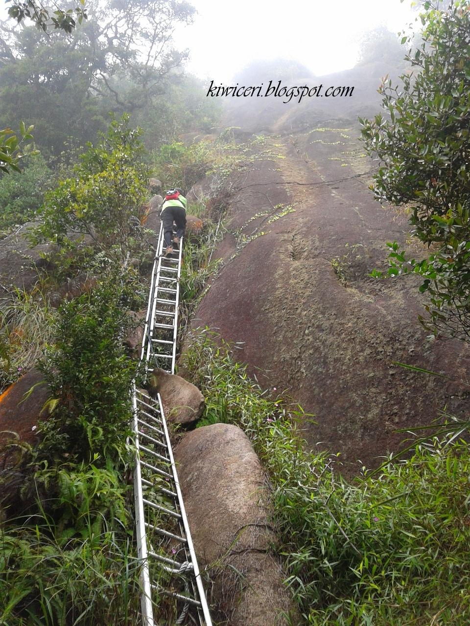 1 Hari 1 Ayat: Pengalaman Pertama Mendaki Gunung Ledang