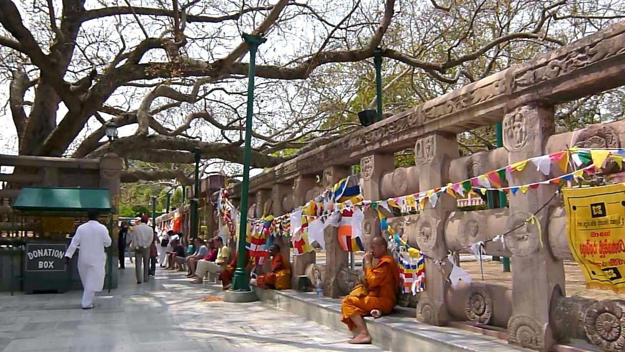 patna buddhist personals Delhi, varanasi, sarnath, bodh gaya, rajgir, patna, vaishali  that was the birth of buddhism,  agam kuan – the well dating back ashokan period, etc.