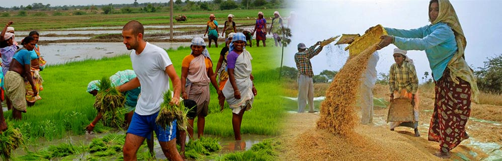 "the soul of the real india lives in its villages essay Introduction "" the soul of the real india lives in its villages"" mahatma villages are the backbone of a nation the sky scrapers in cities and in metropolitans are having their root in villages and being strait and majestic because of the backbone, villages."