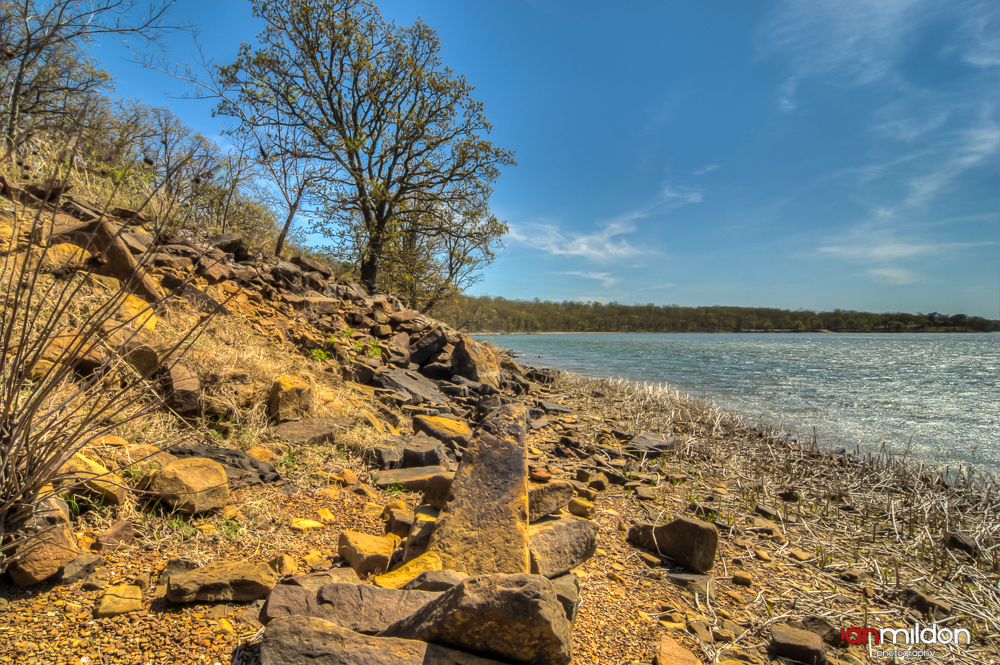 rocky shore and tree at Okmulgee Lake, Oklahoma