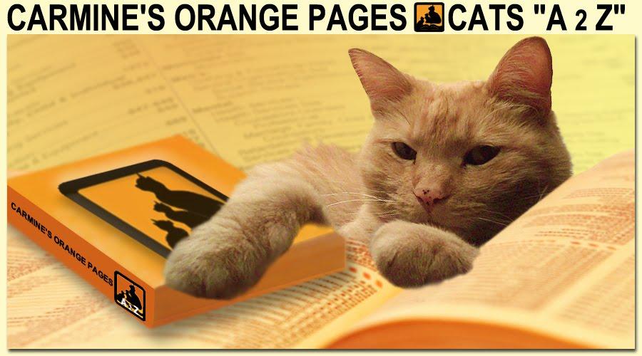 Carmine's Orange Pages