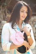 Anushka with Puppy at Blue Cross Pet Carnival Press meet-thumbnail-20