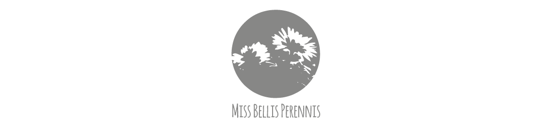 Miss Bellis Perennis