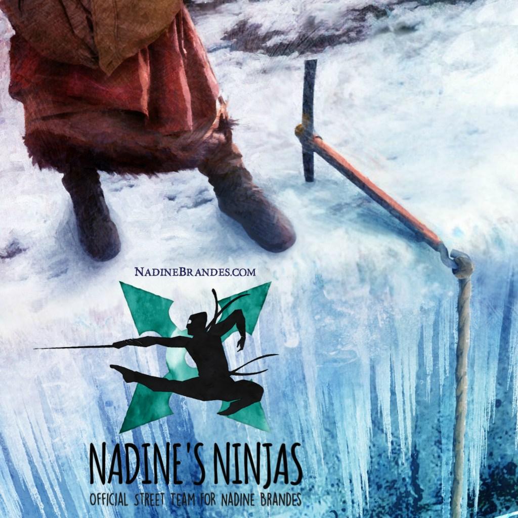 Nadine's Ninjas