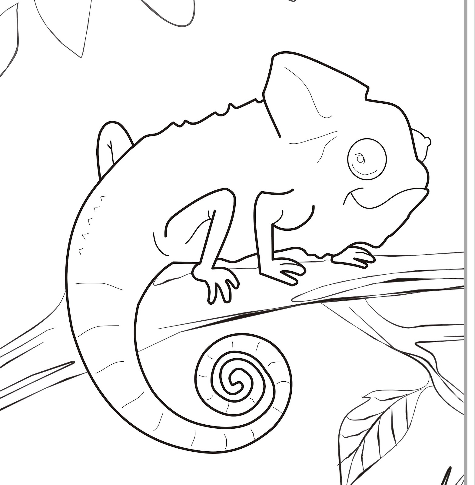 chameleon coloring pages - photo#4
