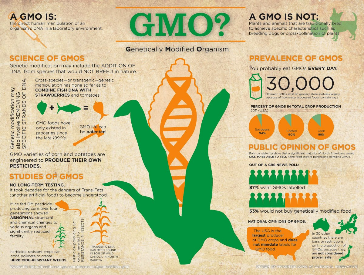first off let s define what a gmo is it sounds really scary but simply put it s just the science of breeding intermingling species to create heartier