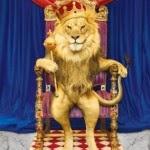 raja singa
