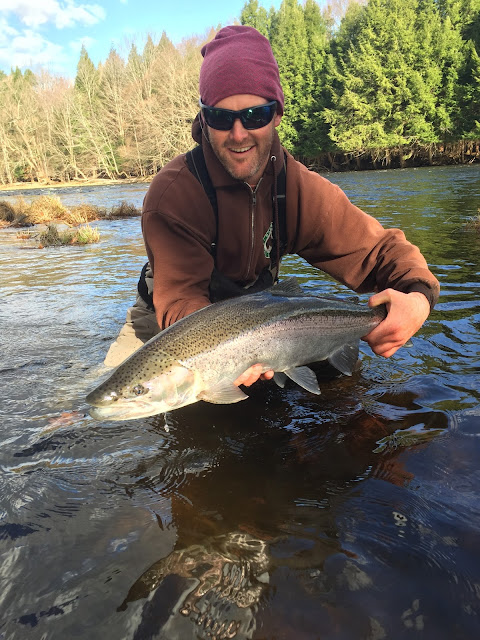 Boston fly fishing and report steelhead fishing in for Trout fishing ny