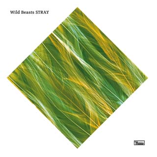 Wild Beasts – Stray Lyrics | Letras | Lirik | Tekst | Text | Testo | Paroles - Source: musicjuzz.blogspot.com