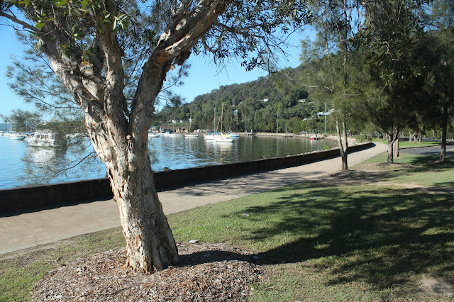 Brisbane Water at Koolewong