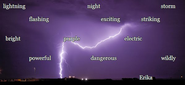 My Blog Verwandt Mit Lightning: Erika's AMAZING Blog