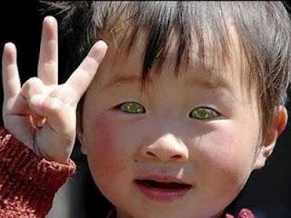 niño gato, ver en la oscuridad, ojos de gato, Nong Youhui