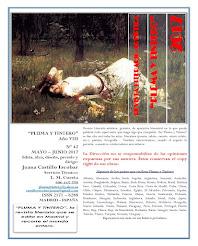"""Revista """"Pluma y Tintero"""" - Nº 42 MAYO-JUNIO 2017"""