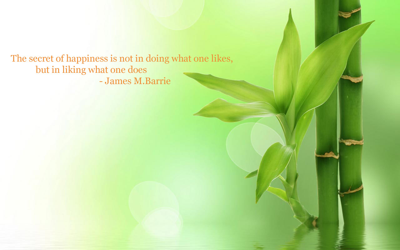 zen quotes on happiness - photo #32