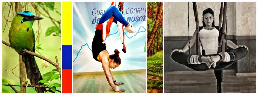 aerial yoga Emocionados de REGRESAR A BOGOTA 23-30 MARZO 2014 con la segunda promoción de profesores de Yoga Aéreo© colombiana by AeroYoga®. PLAZAS LIMITADAS RESERVA HOY. INFORMES EN aeroyoga@aeroyoga.info LEE EL EVENTO COMPLETO EN FACEBOOK AQUI!:  https://www.facebook.com/events/274908285995762/  Album: Fotos y vídeos Realizados durante la formación profesional del AeroYoga® Institute en Colombia. Gracias a todos los participantes por sus fuerza, talento y generosidad. Mas info en www.aeroyoga.es Puedes contactarnos en el mail: aeroyoga@aeroyoga.info y tel: 00 +34 91 457 2215 00 + 34 658644769