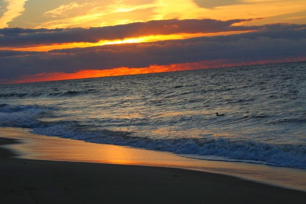 Hamptons, New York, Tanvii.com