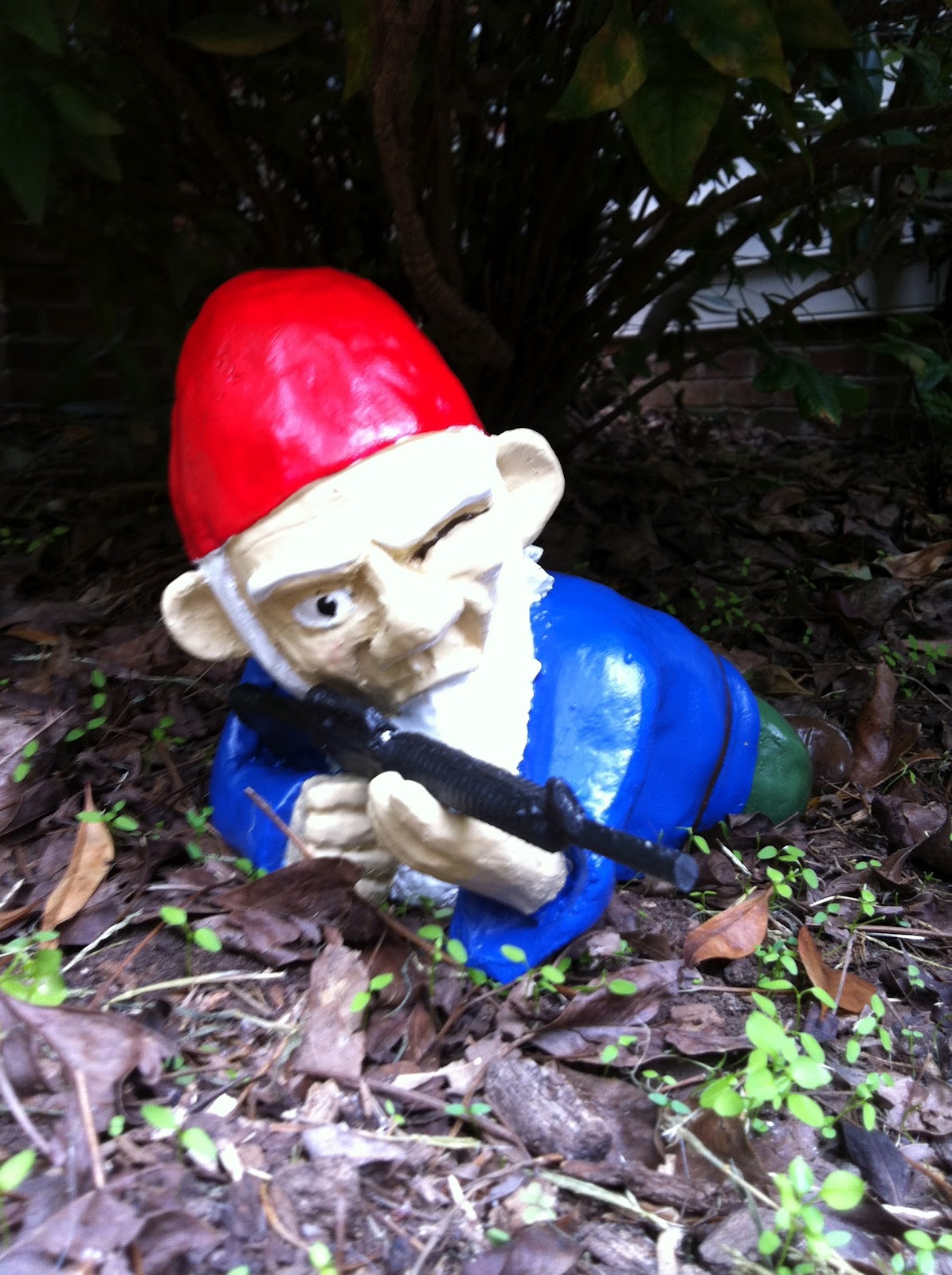 Musings Over a Pint: The Gnomes Are On Patrol