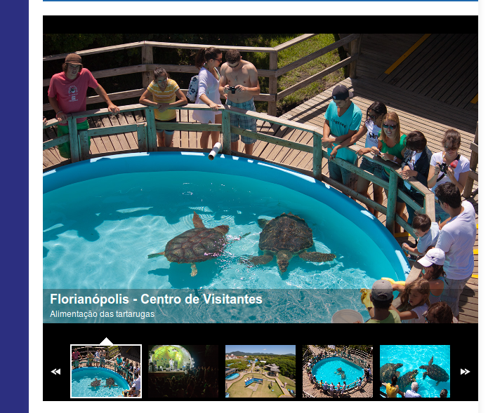 http://www.tamar.org.br/centros_visitantes.php?cod=8