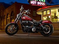 2013 Harley-Davidson FXDB Dyna Street Bob pictures 1