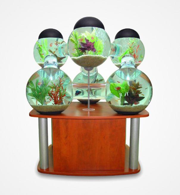 20 Akuarium Paling Unik dan Kreatif di Dunia : Labyrinth Aquarium