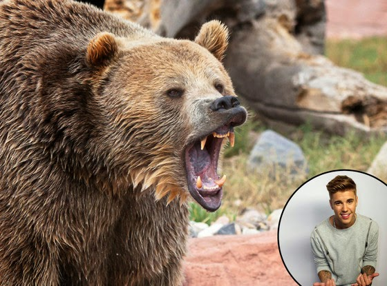 Fisherman Saved From Bear Attack By Justin Bieber Ringtone