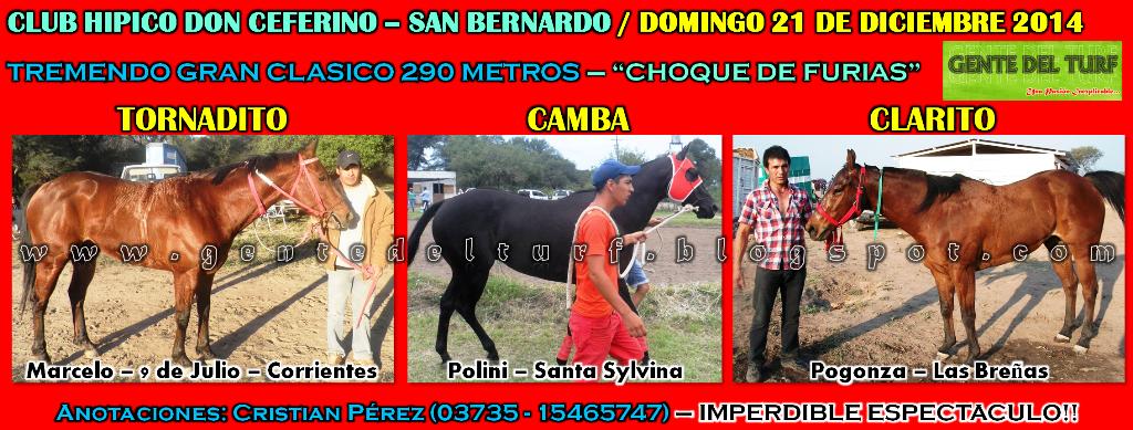 San Bernardo Mas Clasico 21-12-14