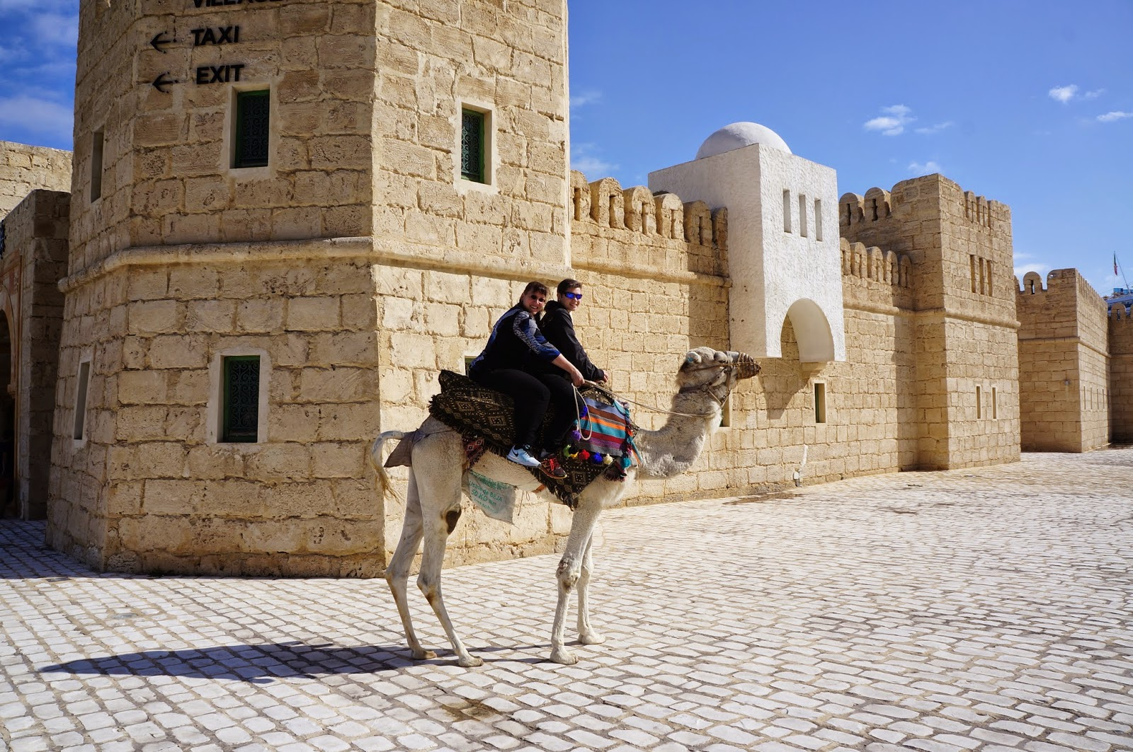 Riding a camel in Tunis Tunisia