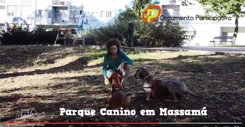 Parque Canino em Massamá