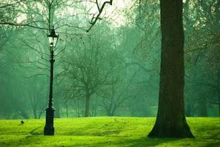 un parque a oscuras solo silencioso olvidado para siempre (fragmento)