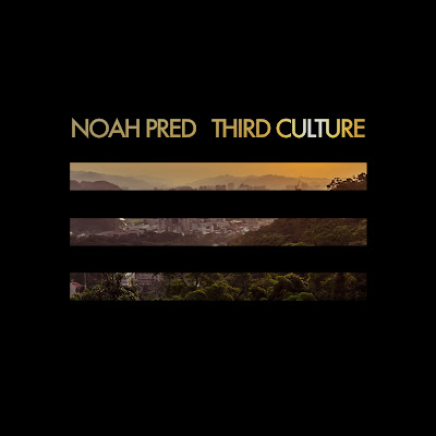 Discosafari - NOAH PRED - Third Culture - Thoughtless Music