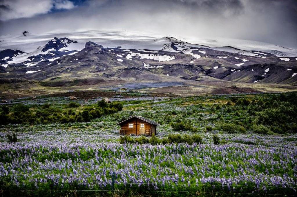منازل جميلة وساحرة