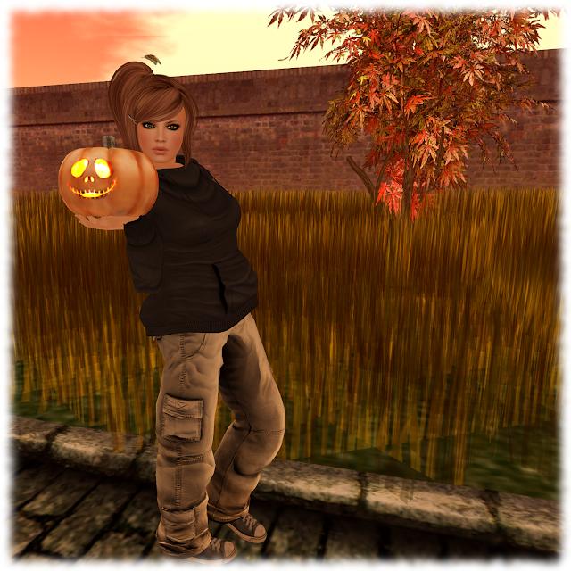 Pumpkin Getting Ready For Halloween