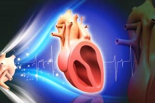 Tips Mudah Menjaga Jantung Agar Selalu Sehat