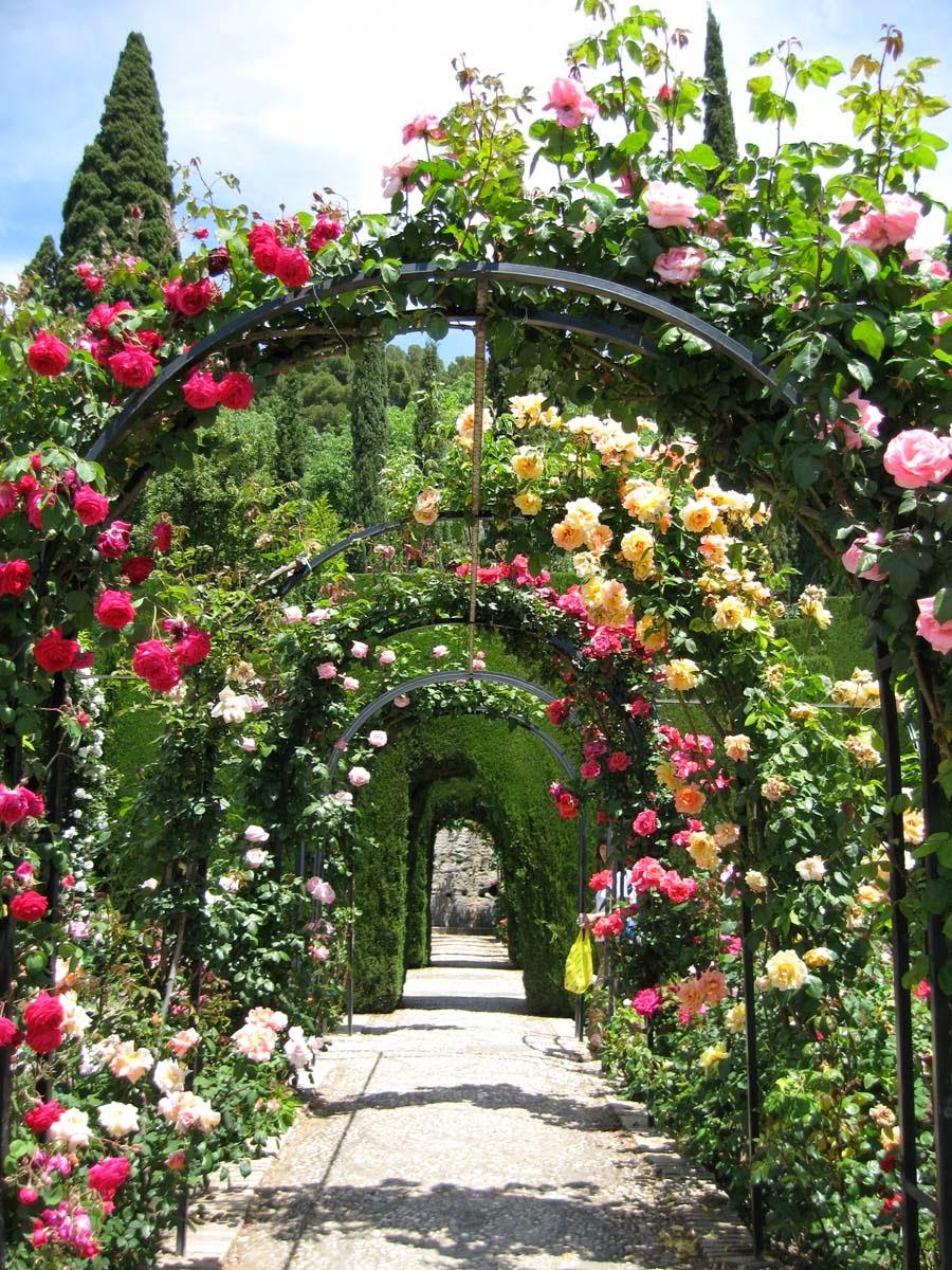 Jardins de alhambra granada espanha modos de olhar for Jardin de gomerez granada