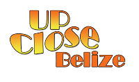 upclose belize logo