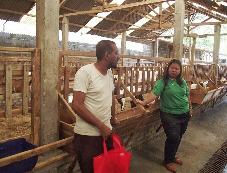 Kunjungan ke Farm dan Pelatihan Peternakan tgl 22 September 2013