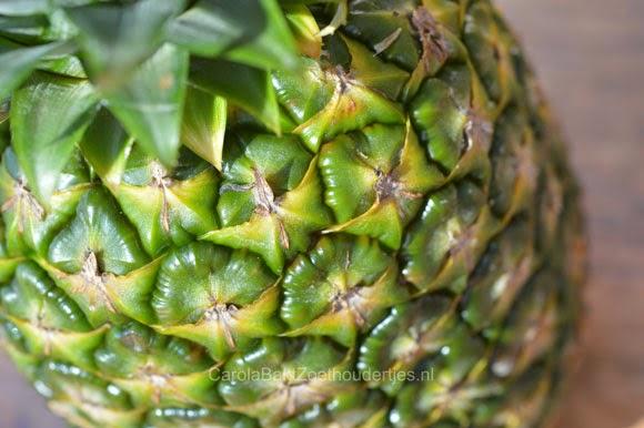 Ananas mousse en ananas ijs van puur fruit