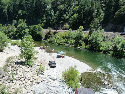 Sacramento River excursions: Dog Creek River Access