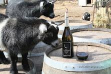 Goat Wine