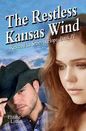 The Restless Kansas Wind