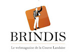 Le site BRINDIS.TV