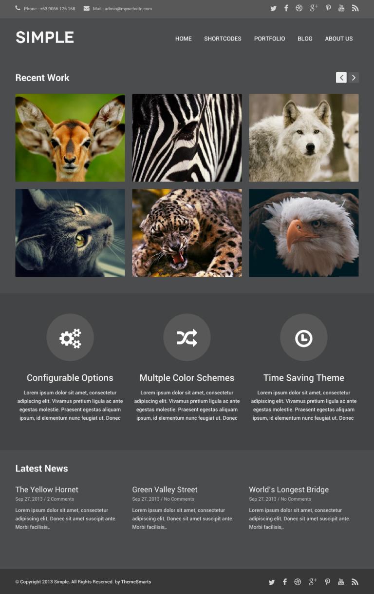Simple Free Portfolio WordPress theme