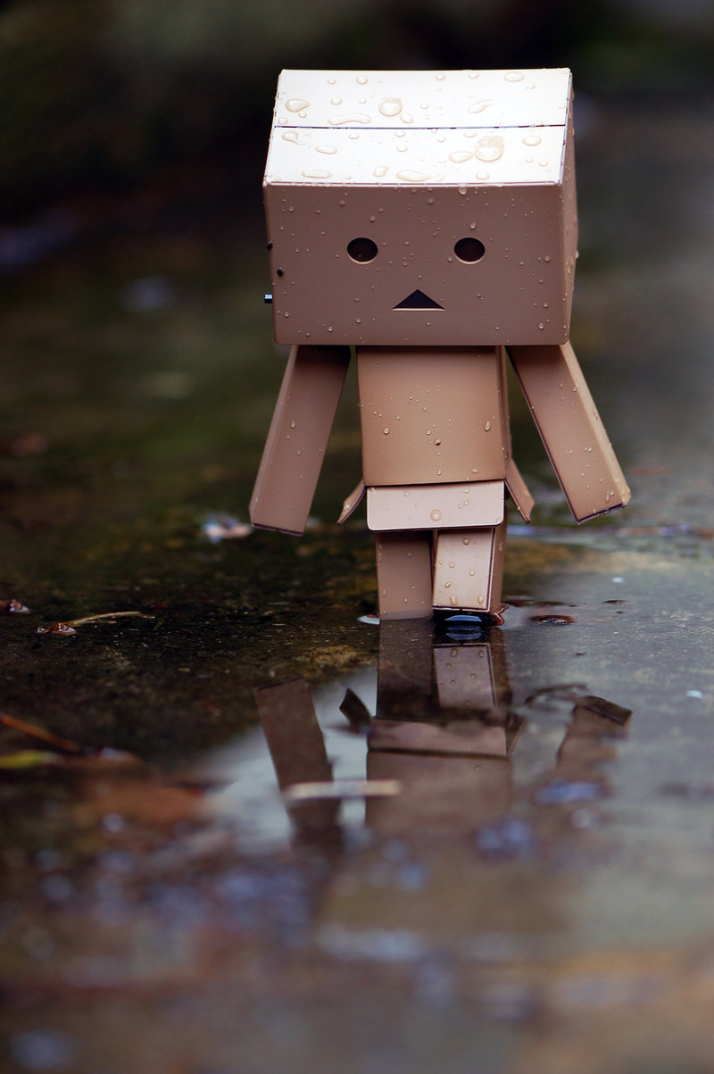 DANBO Walking Alone X