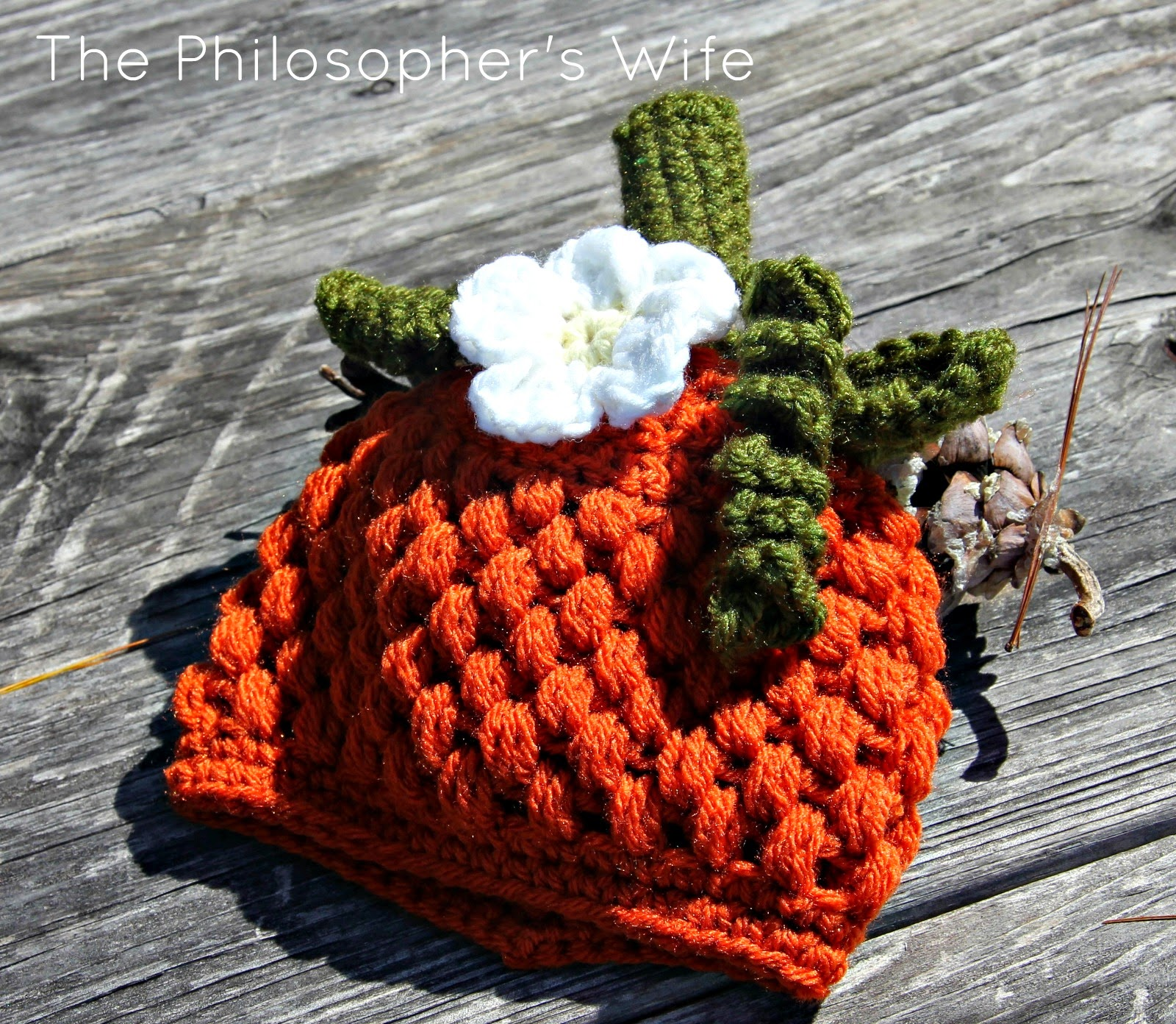 The Philosopher\'s Wife: Baby Pumpkin Hat: Pattern Link & Notes