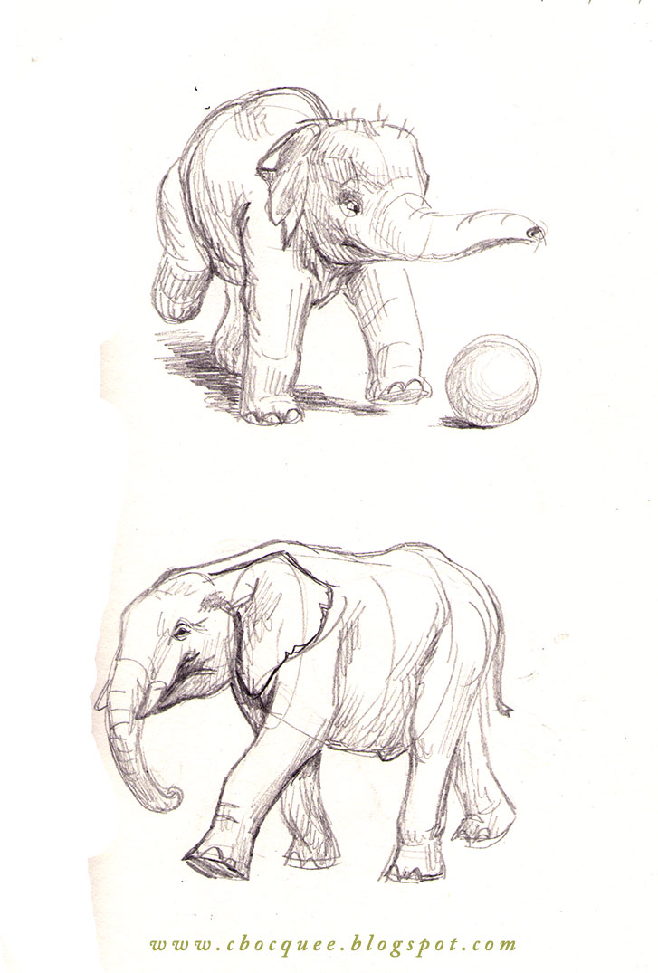 sketchbook drawings of elephants
