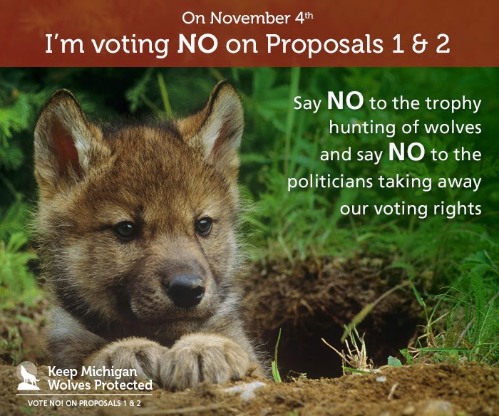 Michigan Voters defeated Proposals 1&2 protecting its wolf population
