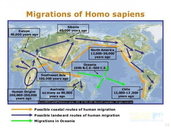 Migrations of Homo Sapiens